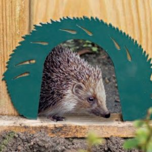 Hedgehog_Gate