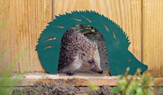 Hedgehog_Gate
